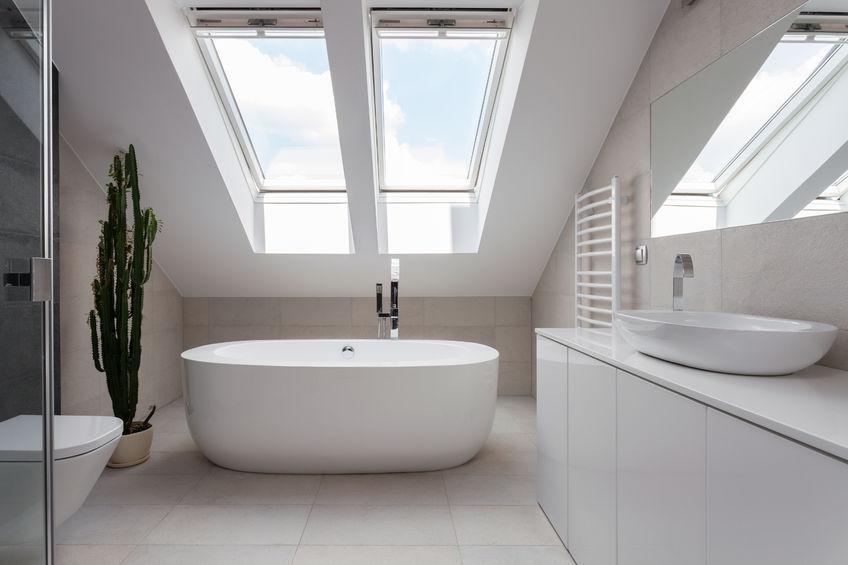 Skylight, Leaky Skylight, Bathroom skylight