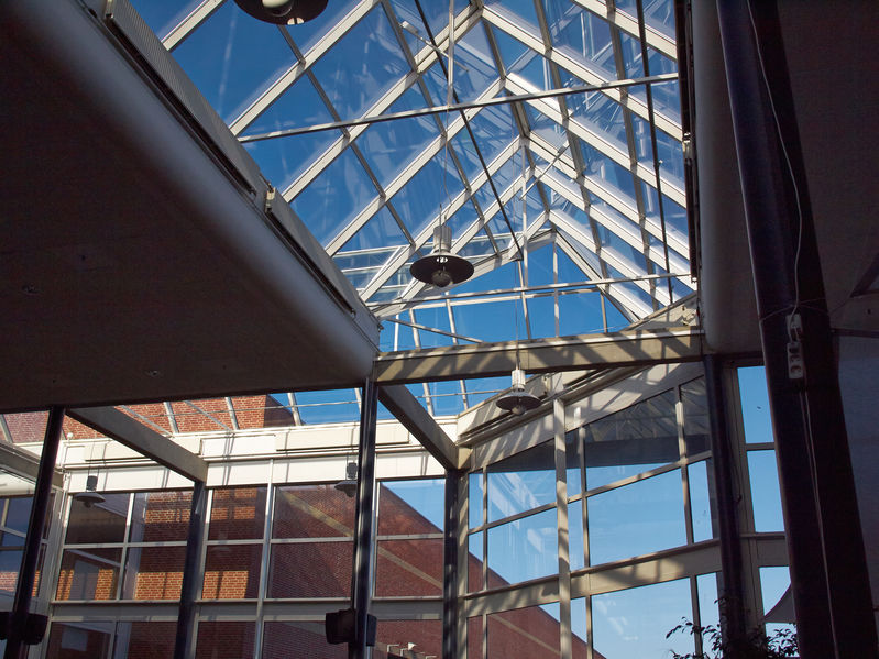 Featured Image for: The Advantages of Commercial Skylights